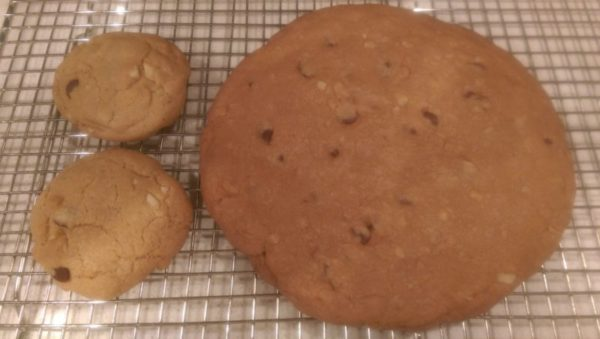 Cookie Colossus Macadamia Nut Cookie