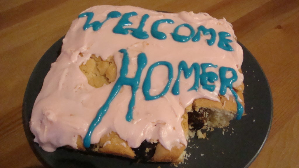 Welcome Homer Cake 2