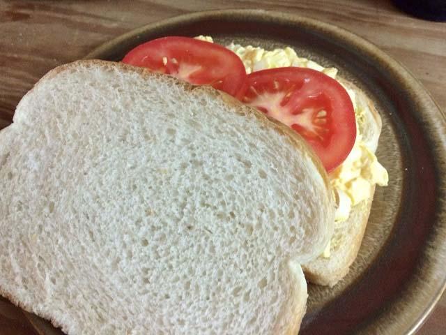 Toilet Sandwich